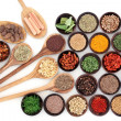 Culinary Herbs and Spices — Stock Photo #48019711