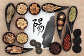 Chinese Herbal  Medicine — Foto de Stock