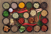Spice en kruid sampler — Stockfoto