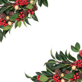 Bordo decorativo Natale — Foto Stock