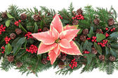 Winter Floral Decoration — Stock Photo