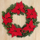 Poinsettia Wreath — Stock Photo