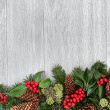Traditional Winter Border — Stock Photo #49714837