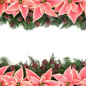Poinsettia Flower Frame — Stock Photo