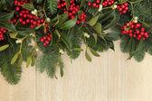 Holly and Mistletoe Border — Stock Photo