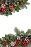 Festive Winter Border — Stock Photo