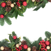 Traditional Christmas Border — Stock Photo