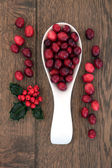 Cranberry Fruit — Stock Photo