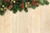 Bordo verde invernale — Foto Stock