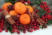 Christmas Fruit and Spice — Stock Photo