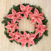 Poinsettia Flower Wreath — Stockfoto