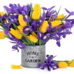 Spring Bouquet — Stock Photo #8973083