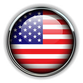 USA button — Stock Vector