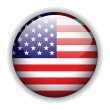 North American flag button, vector — Stock Vector #2055928