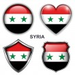 Syria icons — Stock Vector