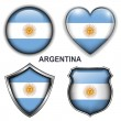 Argentina icons — Stock Vector #26839465