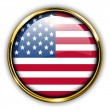 USA button — Vector de stock