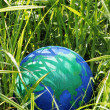 Globe in the grass — Stock Photo