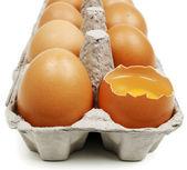 Broken egg — Stock Photo