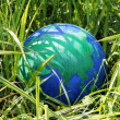 Globe in the grass — Stock Photo #42737547