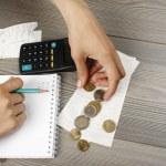 Household budget — Stock Photo #5891372