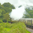 Stock Photo: An Old Steam Train