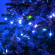 Stockfoto: Christmas tree