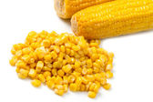 Corn pile on white background . — Stock Photo