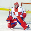 Hockey goalie - Stock Photo
