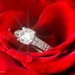 Golden diamond ring and rose — Stock Photo