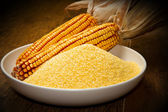 Cornmeal — Stock Photo