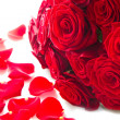 Background of red rose petals - Stock Photo