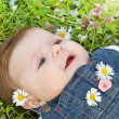 Baby on green grass with daisy - Stock Photo