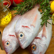 Sea bream - Stock Photo