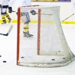 Hockey net — Stock Photo #21305485