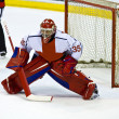 Hockey goalie — Stock Photo #22540231