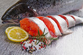 Slice of fresh salmon — Stock Photo