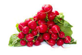 Red radishes — Stock Photo