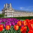 Stock Photo: Palace in Luxembourg Gardens, Paris, France