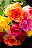 Bouquet of colorful roses on white background — Stock Photo