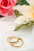 White orchids and pink rose and wedding rings — Stock Photo