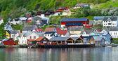 Vesnice a výhledem na moře na horách v fjord geiranger, norsko — Stock fotografie
