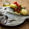 Stock Photo: Sebream