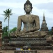 Buddha statue in historical park, Thailand — Stock Photo #30313523