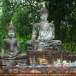 Buddha statue in  historical park, Thailand — Stock Photo