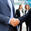 Handshake in front of business people — Stock Photo #31230095