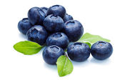 Blue berry — Stock Photo