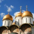 Breathtaking Famous The Annunciation Cathedral and The Archangel — Stock Photo