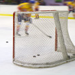 Stock Photo: Ice hockey net