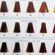 Locks of hair dyed in various shade — Stockfoto